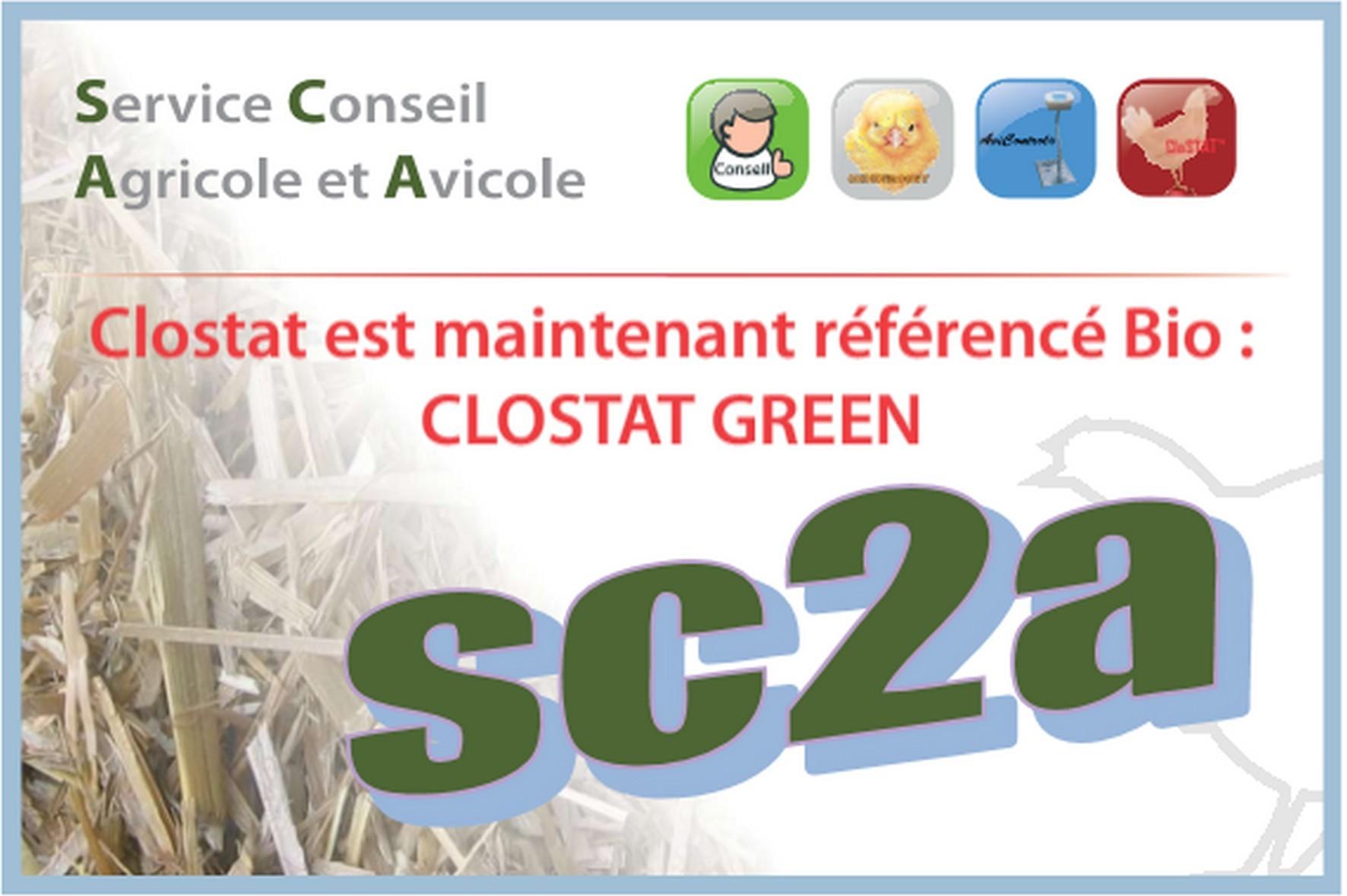 clostat green